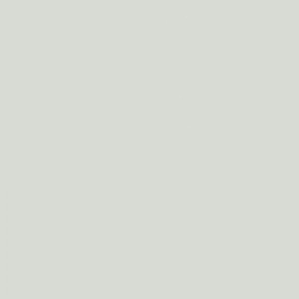 0191MG Pilka blizgi
