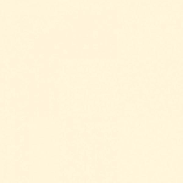 KS0514MG Dramblio kaulo blizgi