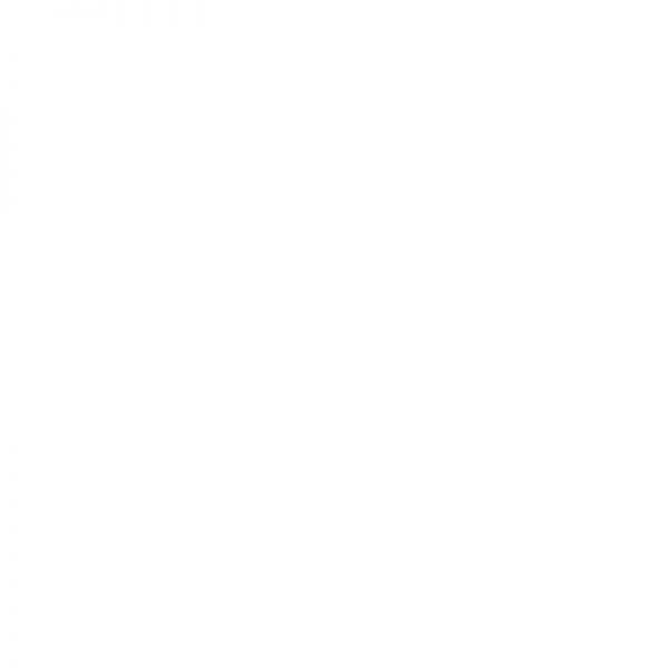 KS8685MG Balta blizgi